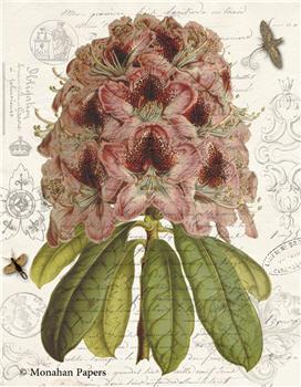 Botanical 71 - BOT71