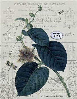 Botanical 74 - BOT74