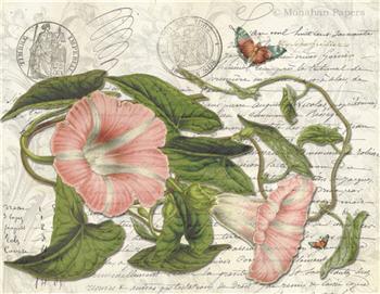Botanical 85 - BOT85