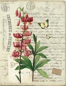 Botanical 88 - BOT88