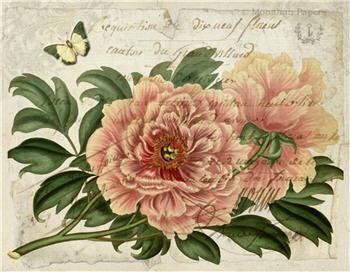 Botanical 89 - BOT89