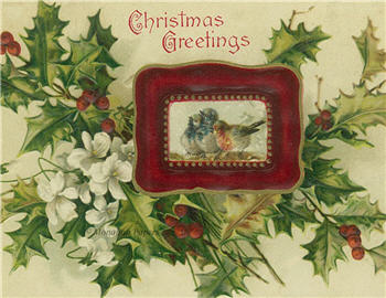 Red Framed Birds Christmas Greetings - C226