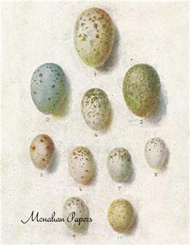 Egg Plate - E12