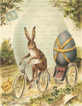 Bunny Bicycle - E89