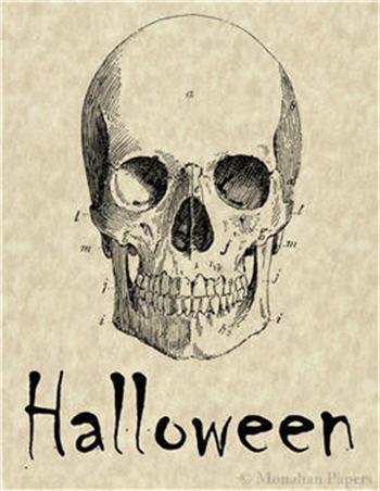 Halloween Skull - H43