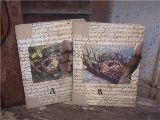 Nest Journals