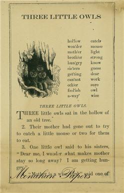 Three Little Owls - SPS106