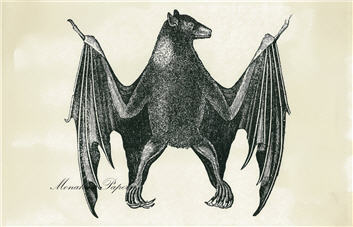 Black Bat - SPS424