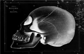 From a Mound at Racine Skull - SPS602i