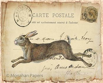 Running Hare - SPS672