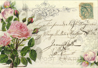 Pink Roses Post Card - X19