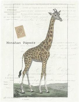 The Giraffe - X340