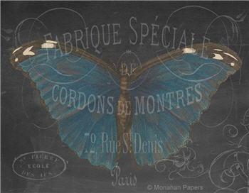 MONTRES Chalkboard Butterfly- X492